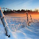 Warm cold winter sunset, Eesti looduskalender maastik by Romeo Koitme