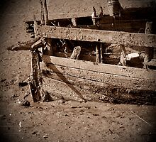 Rotting boat, Bideford, Devon, UK by buttonpresser