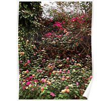 """""""Flower path"""" Poster"""