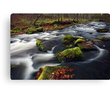 Small river cascade Canvas Print