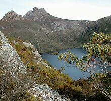Dove Lake from Hansons Saddle, Cradle Mountain,Tasmania,Australia. by kaysharp