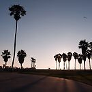 Venice Beach by Chris Muscat