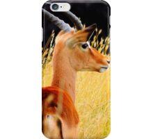 Gazelle iPhone Case/Skin