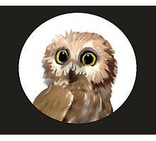 Owlet Photographic Print