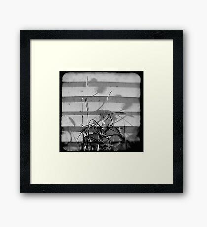 TTV Framed Print