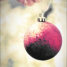 Bauble by Melinda  Ison - Poor
