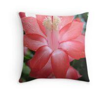 Coral Coloured Zygocactus Throw Pillow