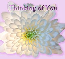 Thinking of You by David's Photoshop