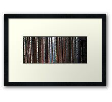 Parallel lives Framed Print