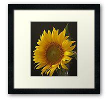 a flower for Vincent Framed Print