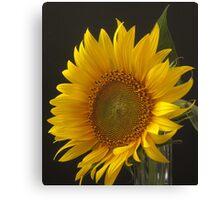 a flower for Vincent Canvas Print
