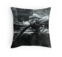 29.8.2010: Years Without Throw Pillow
