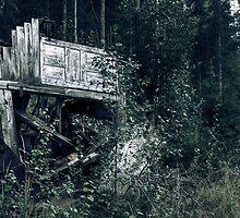 29.8.2010: Road to Oblivion by Petri Volanen