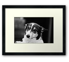 Don`t Ya Want Me? Framed Print
