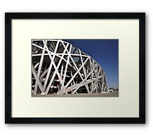 The Birds Nest - Beijing Framed Print