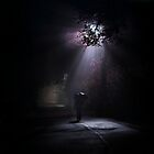 Light and darkness by Alshain