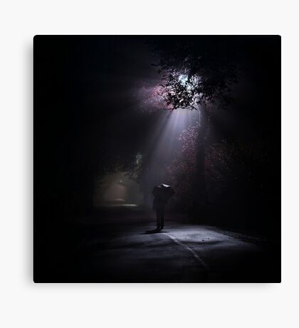 Light and darkness Canvas Print