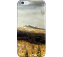 Between Winter and Spring iPhone Case/Skin