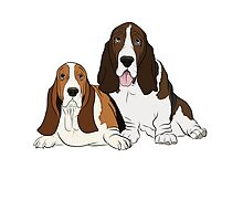 Two Bassets  by Rachel Counts