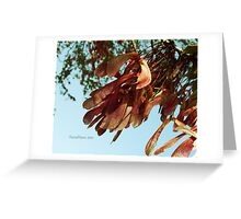 Fly Away. Greeting Card