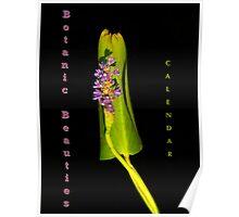 Botanical Beauties Calendar Cover Poster