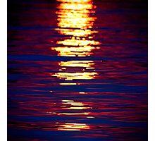 Sunshine On Linyanti Photographic Print