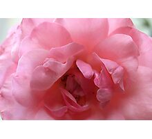 softly protected heart Photographic Print