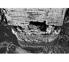 Strong structures Photographic Print