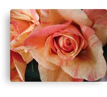COLOR SPLASH ROSES Canvas Print