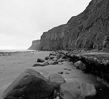 Saltburn Cliffs by gazmercer
