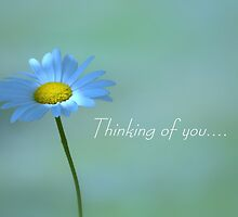Thinking of you... by Laurie Minor