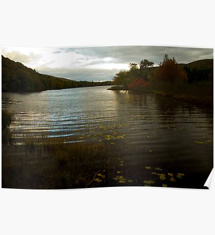 Cape Breton river in fall - Nova Scotia Poster