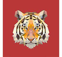 Geometric Tiger Photographic Print