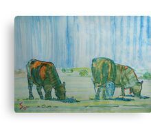 Feel The Heat - Cattle grazing under the hot sun Canvas Print