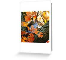 A Time to Be Still... Greeting Card
