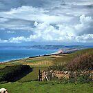 Jurassic Coastline-Dorset by naturelover