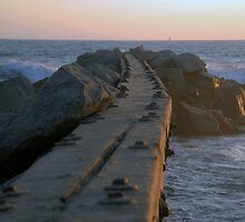 Gnarly Wooden Jetty by tom j deters