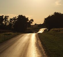 Golden Hour on Lover's Lane by cdgo77