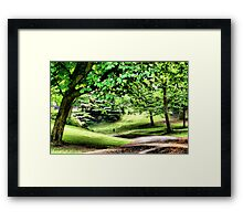 A Walk In The Park In Spring ~ Only Tree Huggers Need Apply..... Framed Print
