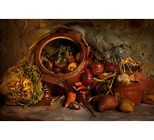 Stewpot with home grown vegetables Photographic Print