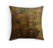 A brisk October walk in the woods Throw Pillow