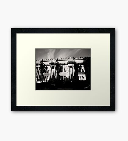 Museum Of Natural History Framed Print