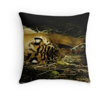 Let Sleeping Tigers Lie Throw Pillow