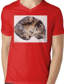 Sleepy kitty Mens V-Neck T-Shirt