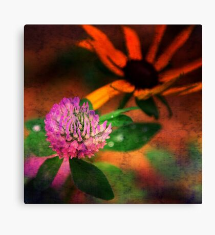 One Little Clover Canvas Print