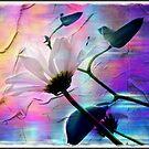 Pastel floral by Olga
