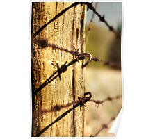 A long line of fence Poster