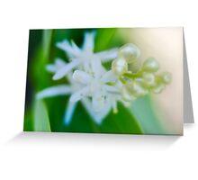 Pearl Flower Greeting Card