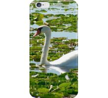 Swan in Lily Pads iPhone Case/Skin