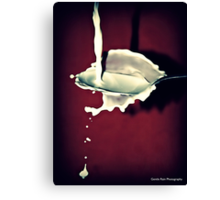 Sploosh!! Canvas Print